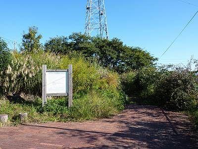 清瀬下宿ビオトープ公園1