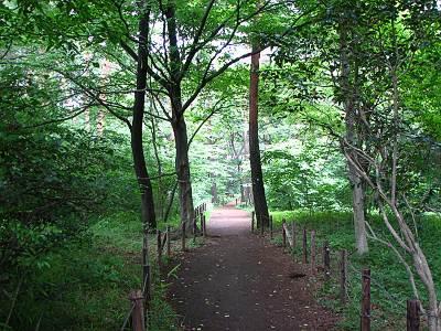 松山緑地保全地域