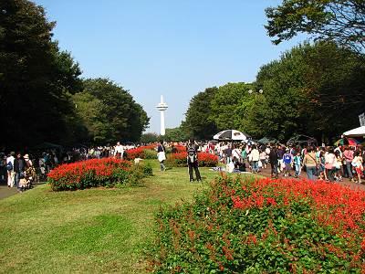 第27回 所沢市民フェスティバル