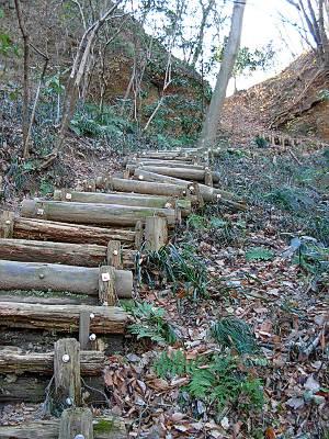 あけぼの子どもの森公園からの登り口は急登