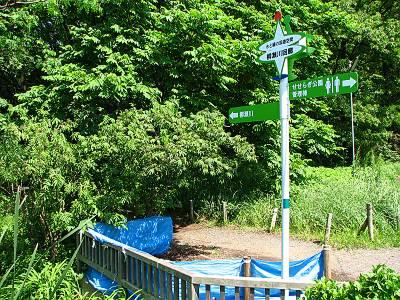 清瀬せせらぎ公園内の道標