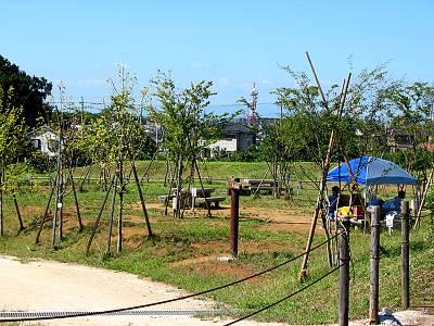 所沢カルチャーパークのデイキャンプ場