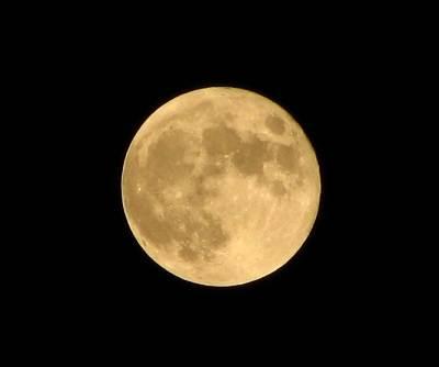 中秋の名月 (PowerShot S2 ISにて撮影)