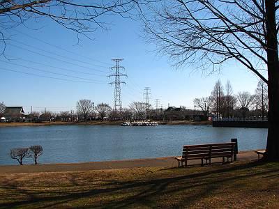 川越水上公園の池