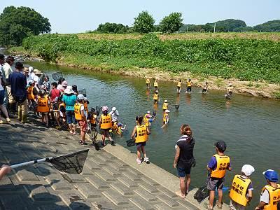 柳瀬川で川遊び
