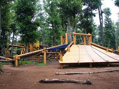 野山北公園 冒険の森