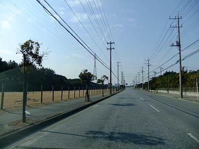 海浜公園周辺の少し広い道