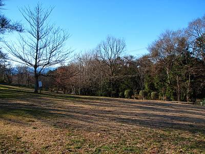 六道山公園冬1