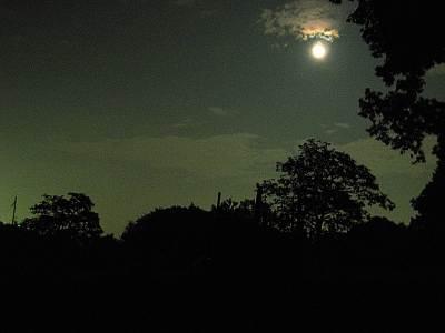 鳩峰八幡神社近くから見た夜空