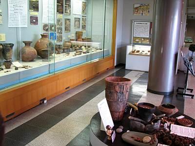 所沢市 埋蔵文化財調査センター