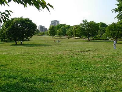都立武蔵国分寺公園の南側