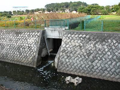 日比田水路が東川に流れ込む箇所