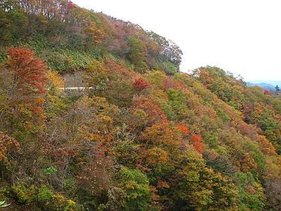 有間山付近の紅葉