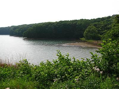 狭山湖入り瀬