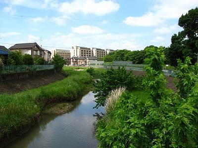 空堀川くるまや橋から下流