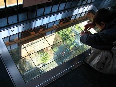 東京タワー ルックダウンウィンドウ(大)