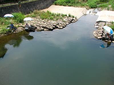 空堀川 野塩橋の下は釣堀