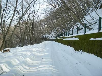 刈場坂峠から飯盛峠向け途中の雪の様子