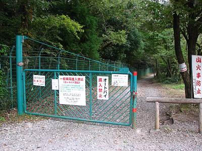 六道山公園の狭山湖外周道路