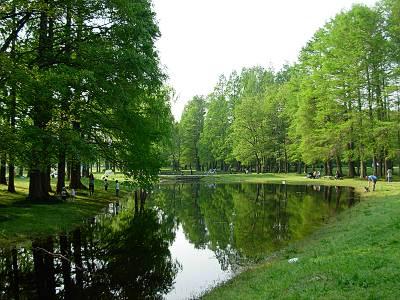 新緑の秋ヶ瀬公園