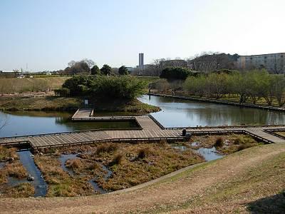 金山調節池