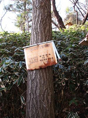 保護地区 安松神社