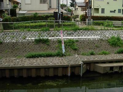 善福寺川の水位を測る装置