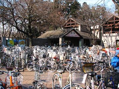井の頭自然文化園の自転車