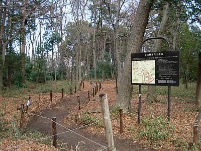 小山緑地保全地域