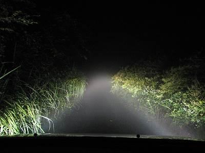 八溝山への夜の道