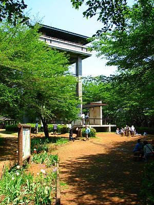 入間市桜山展望台