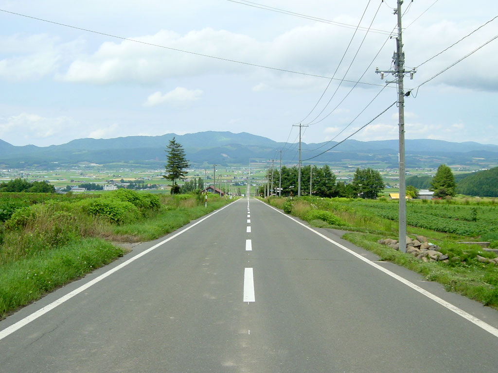 道路 日本 一 長い 直線