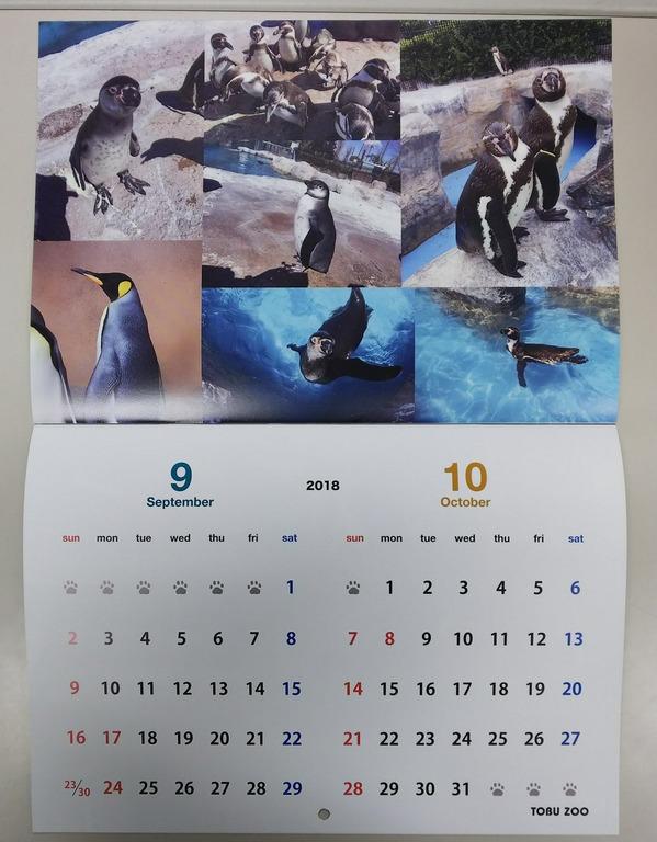 IMG_20171021_175013