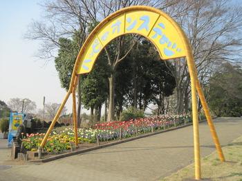 30ハッピーオンアーチ花壇
