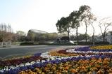 東ゲート風景 パンジーとカバ像