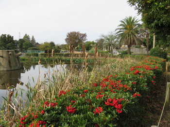 24サバンナ前池