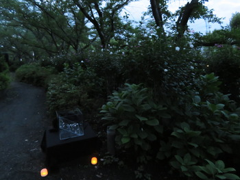 24レジーナ遊歩道(ホタルの小径前)