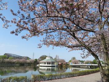 2021.4.3桜(東ゲート)