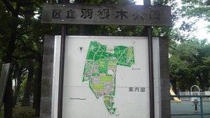 羽根木公園1