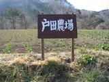 戸田農場2