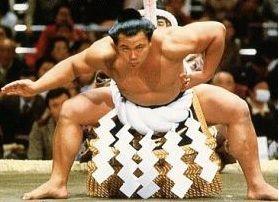 相撲取りってボディービル体型ではあかんのやろか? : 今日の野球ニュース