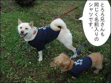 名前入りシャツ-3コマ