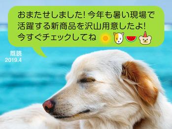 01_犬の表紙