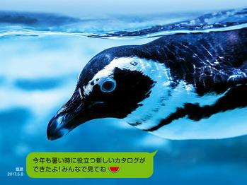 00_ペンギン