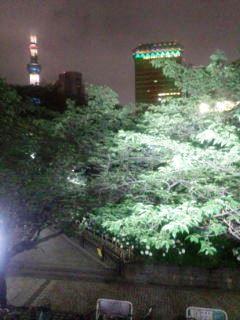 0617-6浅草夜