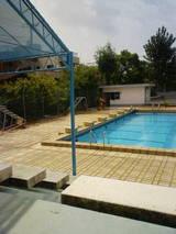 夏だけの公営プール
