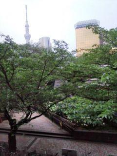 0617-5浅草昼