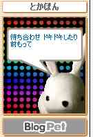 とかぽん俳句01