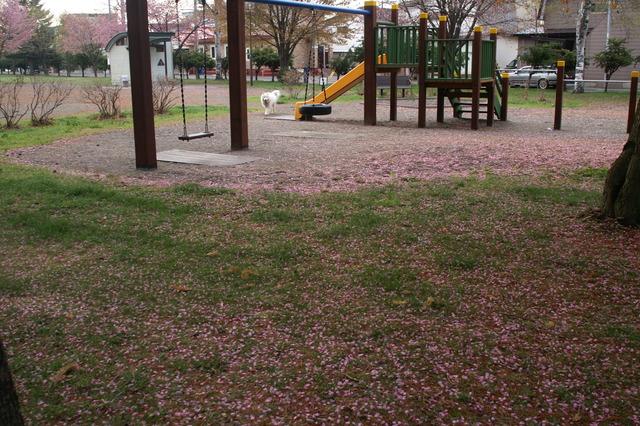 めぐみ児童公園