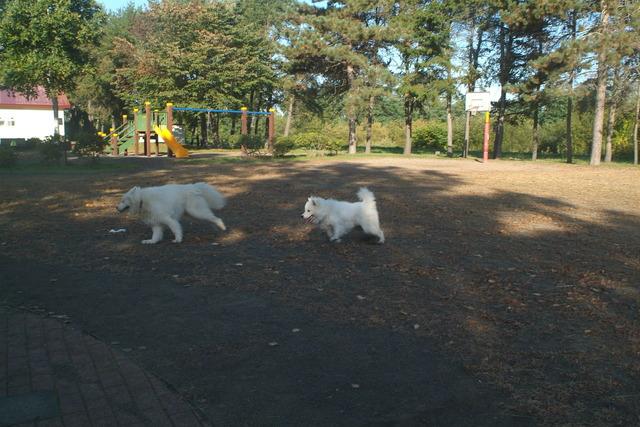 めぐみ児童公園2